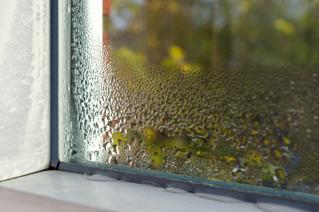 how-to-protect-wooden-window-frames-1